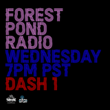 Forest Pond Radio ep 37 - Guest Set - DJ Trackstar presents Ghost Stories (Ghostface mix)