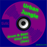 Urban Jungle Drum & Bass (Vinyl Mix)