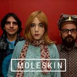 Moleskin // The Strawberry Finns
