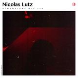 DIM114 - Nicolas Lutz