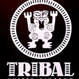Tribute to Tribal America part II