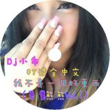 Dj 小乖 - 打造全中文 我不是一個好東西【專屬熊熊Vol.1】