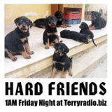 HARD FRIENDS #13 2016-11-11