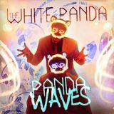 Panda Waves (Ep. #12)