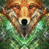 Fuchsbau Psytrance Set Summer 2017