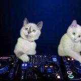 We Love Dance Parties guest mix -- Craylic