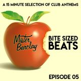 Mister Barclay presents Bite Sized Beats (Episode 05)