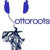 OTTOROOTS - FEVER TIME