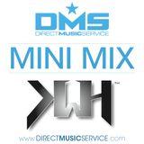 DMS MINI MIX WEEK #201 HAZE
