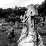 Morte Vol. 2