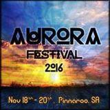 Ashcats @ Aurora Festival