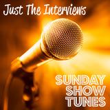 Just The Interviews - Richard Shelton