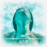 Dirty South & Thomas Gold - Alive (Sasha Dangelo & Felipe Simo 2012 Booty)
