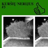 KURŠIŲ NERIJUS #3