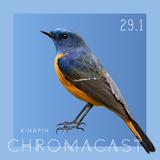Chromacast 29.1 - Kingpin