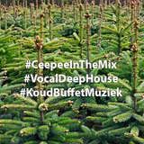 Let's Plant The Kerstboom Mix