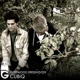 Gottwood Presents 029 - Cubiq