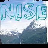 NISE - STEER