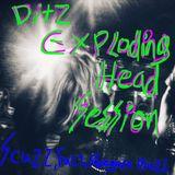 Tuckshop Community Radio and Exploding Head Sessions present DITZ!!!!