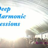 Deep Harmonic Sessions Podcast Volume One By DC Brown