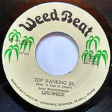 "Top Ranking J.A.: Vintage 70s Roots Reggae 7"" selection"