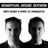 Sensorial House Section # 99    24-04-2014