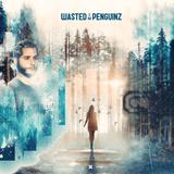 Hardstyle Mix // Cyber & WastedPenguinz // FreeRelease Mix