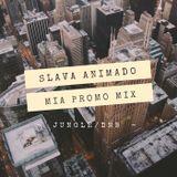 SLAVA ANIMADO - M.I.A. USA PROMO MIX