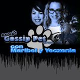 RADIO GOSSIP PET EN VIVO - 2 ENERO 2014