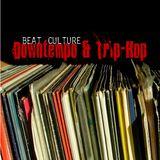 Beat Culture 001: Downtempo + TripHop