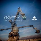 Oceanvs Orientalis - Robot Heart - Burning Man 2016 - live
