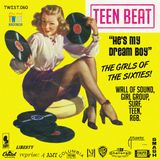 TEEN BEAT - THE GIRLS OF THE SIXTIES!