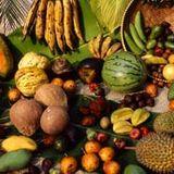 Chelo Scotti - Cumbiastep @ Newessbar 03.2012