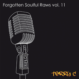 Forgotten Soulful Raws vol. 11