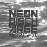 Neon Discharge: Aud 4