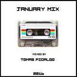 JANUARY MIX (Mixed by TOMAS FIDALGO)