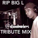 Big L Tribute