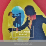 Unexplained Sounds - The Recognition Test # 82
