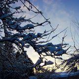 SINKRO@TAMPERE-FINLAND_PROGRESSIVE_vol3_2018-01-19