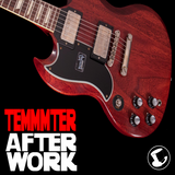 TEMMMTER GUITARS by GLASS HAT