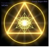 Trentemoeller   -  Moan (Somay Ealyies 47-16-1 Mix)
