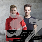 Danceflow Radioshow #37 (1st hr)