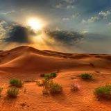Ethnic sessions 004 / Desert Queen