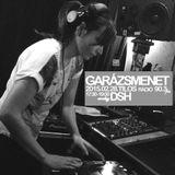 DSH - Live at Tilos Radio Garázsmenet (2015)