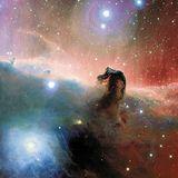 Faces The Horsehead Nebula
