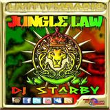 DJ STARBY JUNGLE LAW 25-8-14