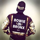 Bowie In Bronx - 001