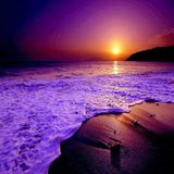 Sunset Vol. 7