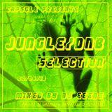 Jungle & DnB Selection 02.06.18