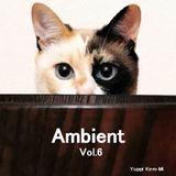 Cafe Gatto / Ambient Vol.6